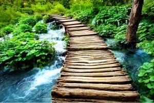 Bridge to Environmental Responsibility University Loft