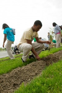Cathedral High School Students Planting Trees at University Loft Company 2013
