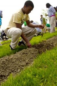 University Loft Arbor Day Tree Planting 2013